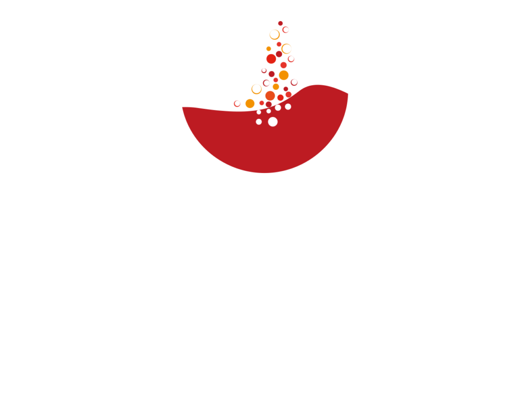 nouveau hcnv logo simple blanc