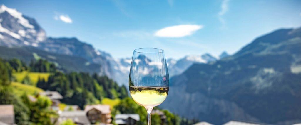 les vins de la vallée du rhone
